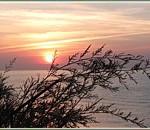 spanish_beach_020