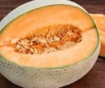 melon_0