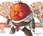 Полезные продукты против рака