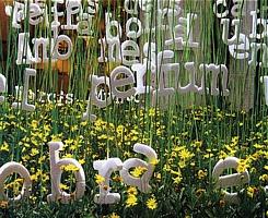 flowers_spain_111