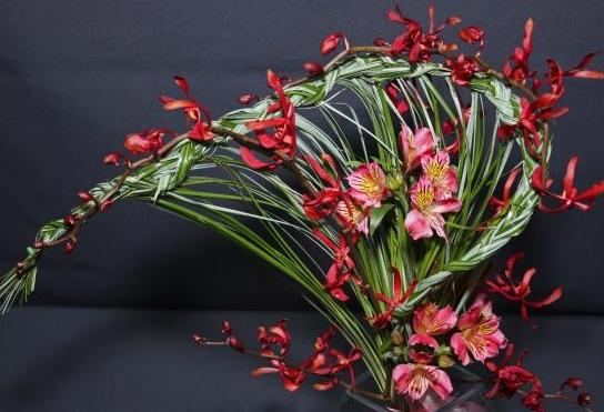 flowers_spain_12