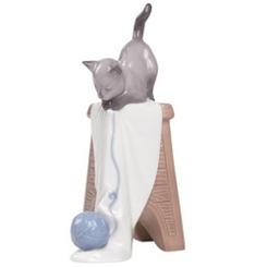 spain_cat_17